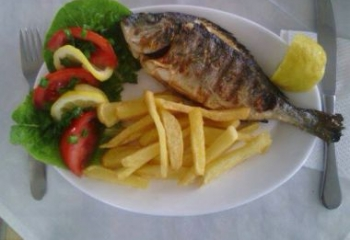 Fresh fish grilled